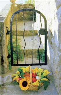 basket of mediterranean vegetables