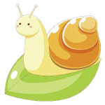 How About Snail Facial?