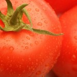Tomatoes for Skin? Yes!